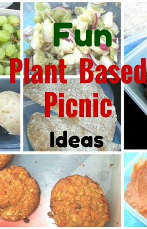 Starch Solution - Plant Based Picnic Ideas